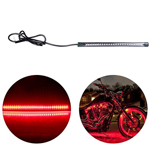 Buell X1 Led Tail Light in US - 9