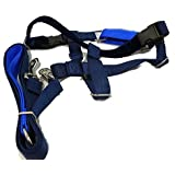 """2 Hounds Design PK LG NAV Freedom No-Pull Dog Harness with Leash, (1"""" Wide), Navy, Large"""