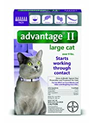 Bayer Advantage II Flea Prevention for Large Cats, Over 9 lb,...