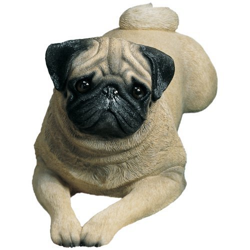 Sandicast Life Size Fawn Pug Sculpture, Lying by Sandicast