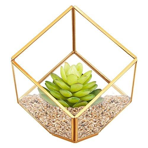 HOMEIDEAS Modern Gloden Geometric Terrarium Metal Faceted Tabletop Succulent Plants Holder Glass Air Plant Holder(Golden)