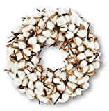 JMB Buyers' CHOICE-10 in Cotton Ball and Petal Wreath or Same 10'' Wreath with Hurricane candlee Holder (2.5'' x 20'' (Wreath only), Cotton)