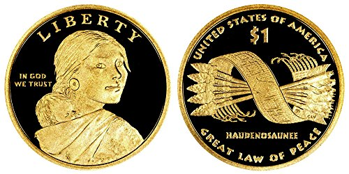 2010 S Sacagawea Native American Proof Dollar PF1