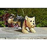 11″ Potty Time Dog Peeing Pug Puppy Garden Statue – Terrier Review