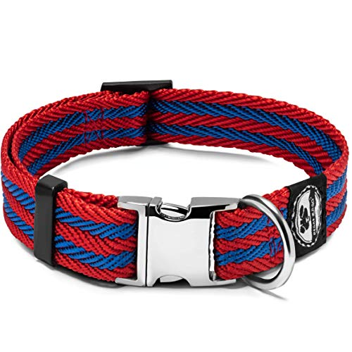 Regal Dog Collar with Metal Buckle and D Ring with Reinforced Stitching and Nylon Webbing Small Dogs and Puppies
