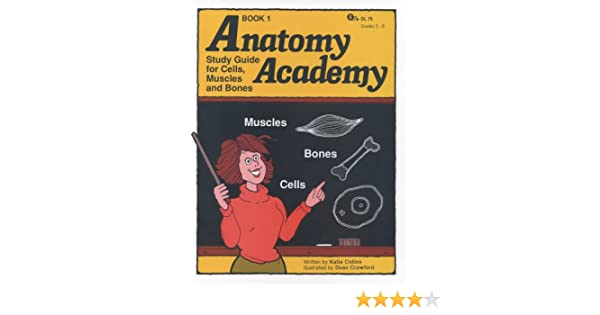 Anatomy Academy, Book 1 - Study Guide for Cells, Muscles and: Katie ...