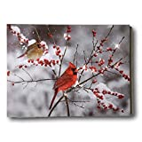 cardinal bird pictures - BANBERRY DESIGNS Cardinal Canvas Print - LED Lighted Print with Cardinals and Berries - Winter Scene Artwork - Cardinal Pictures