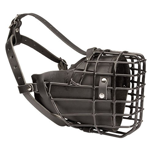 Dean and Tyler DT Freedom Winter Black Padded Muzzle, Siz...