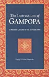 img - for The Instructions of Gampopa: A Precious Garland of the Supreme Path (Dream Flag Series) book / textbook / text book