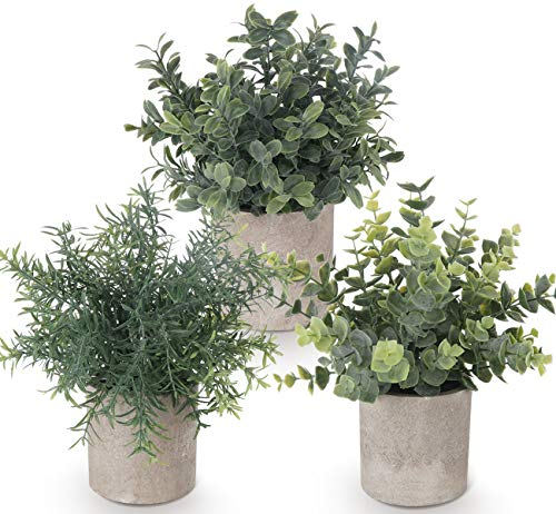 Lemonfilter Set of 3 Mini Potted Artificial Plants Plastic Eucalyptus Plants Faux Rosemary Plants for Home Garden Office…