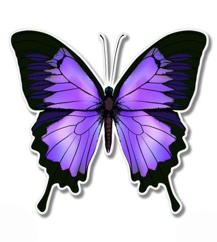 purple fridge magnets - 4