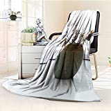 YOYI-HOME Soft Plush Warm Duplex Printed Blanket A Pot of Dry Flowers by The Window Warm Microfiber All Season Anti-Static,2 Ply Thick,Hypoallergenic/47 W by 59'' H