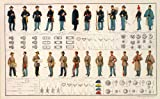 American Civil War Poster. Confederate and Union Uniforms, Rank, Buttons. Reproduction. 16.5 X 27 Inches