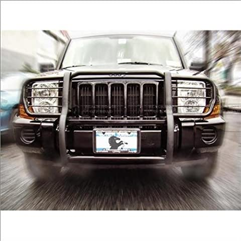 Black Horse 17A081000MA Black Grille Guard, 1 Pack