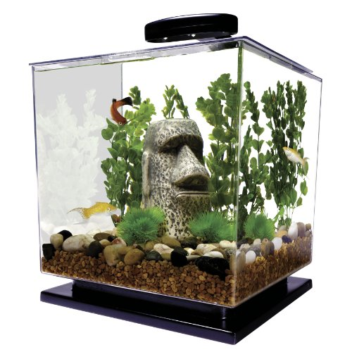 Tetra LED Cube Shaped 3 Gallon Aquarium with Pedestal Base (Goldfish Kit)