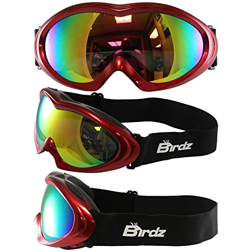 Birdz Icebird Padded Ski Goggles Red Frame Dual Vented G-Tech Reflective Lens Anti Fog Double Lens 100% Uv Protection New