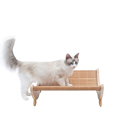 Sensational Amazon Com Alxdr Cat Rocking Chair Playing Mat Kitten Frankydiablos Diy Chair Ideas Frankydiabloscom