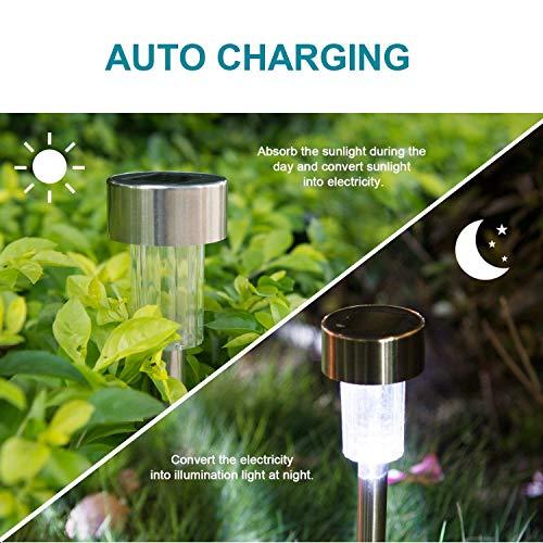 Durable Solar Garden Lights