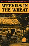 img - for Weevils in the Wheat: Interviews with Virginia Ex-Slaves book / textbook / text book