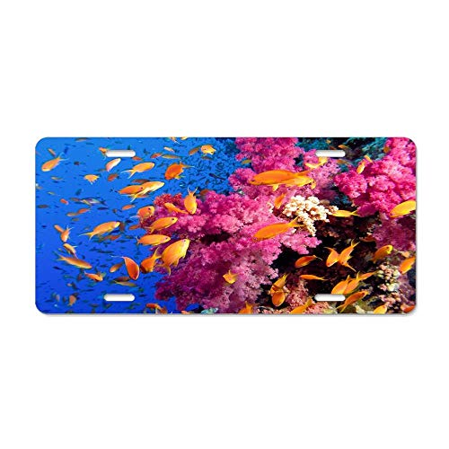 MilitaryAutoTag Ocean Sea Tropical Coral Reefs Orange Fish Personalized Novelty Front License Plates, Custom Decorative Car Tag Sign for US Vehicles ()