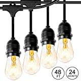 Phiersun LED Edison String Lights 48 Feet