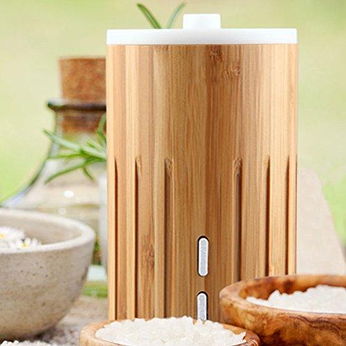 ZAQ Bamboo Lite Mist Aromatherapy Essential Oil Diffuser, Wood, 100ml (Zaq Allay Litemist Aromatherapy Essential Oil Diffuser)