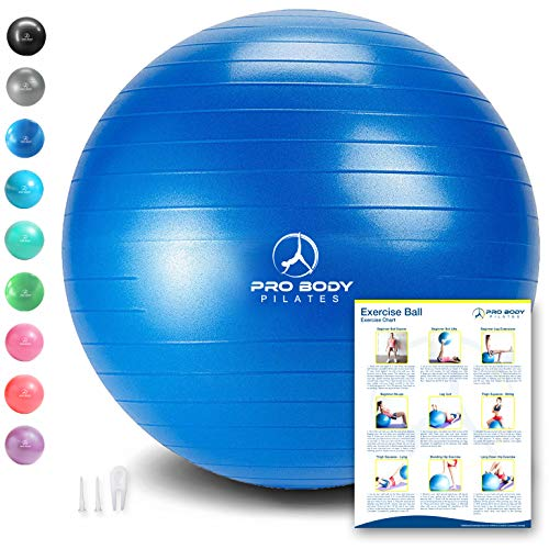 Exercise Ball  Professional