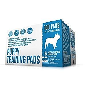 Bulldogology Premium Puppy Pee Pads with Adhesive Sticky Tape – Dog Training Wee Pads (24×24 Large, 100-Count)