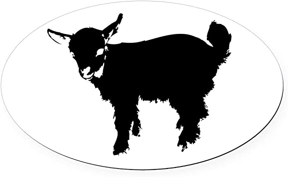 Goat  Funny Refrigerator magnet Made in Usa