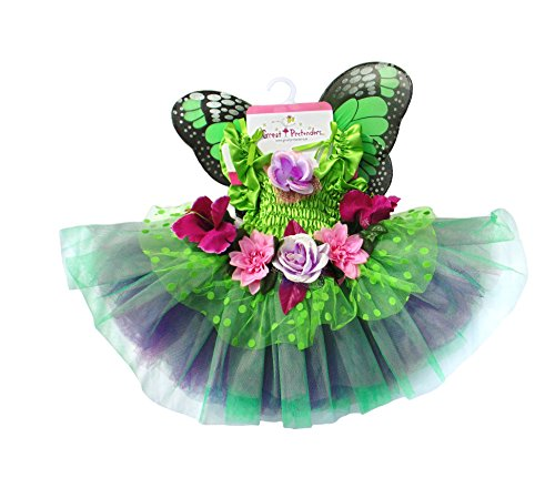 Great Pretenders Fairy Blooms Deluxe Dress with Wings, Green, Medium ()