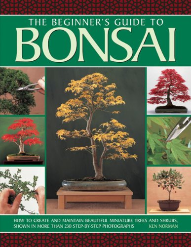 The Beginner's Guide to Bonsai: How To Create And Maintain Beautiful Miniature Trees And Shrubs, Shown In More Than 230 Step-By-Step -