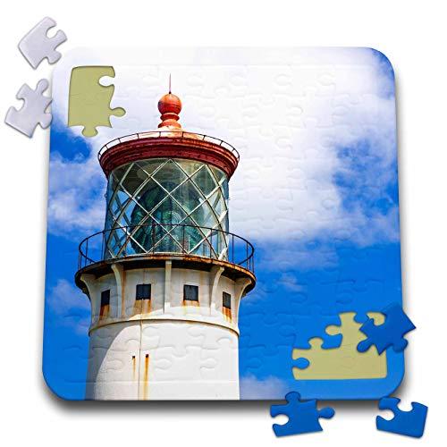 Point Kilauea - 3dRose Danita Delimont - Hawaii - Kilauea Point Lighthouse, Island of Kauai, Hawaii, USA - 10x10 Inch Puzzle (pzl_314811_2)