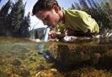LifeStraw Personal Water Filter Straw Official