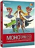 Smith Micro Software Moho Pro 12 2D Animation Software [並行輸入品]