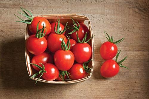 Cherry Bomb Organic F1 Hybrid Tomato Seeds