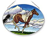 Stained Glass Suncatcher 9 X 6.5 Oval Painted Sky Horse