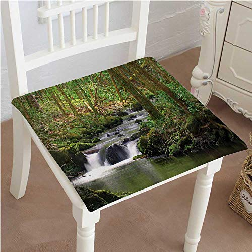 """Mikihome Chair Pads Classic Design Stream Flowing in The Over Mossy Rocks Tree Foliage Splash time Cotton Canvas Futon 20""""x20""""x2pcs"""