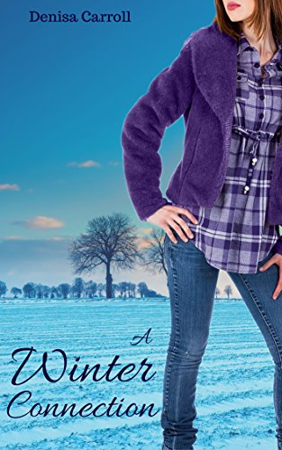 A Winter Connection by Denisa Carroll ebook deal