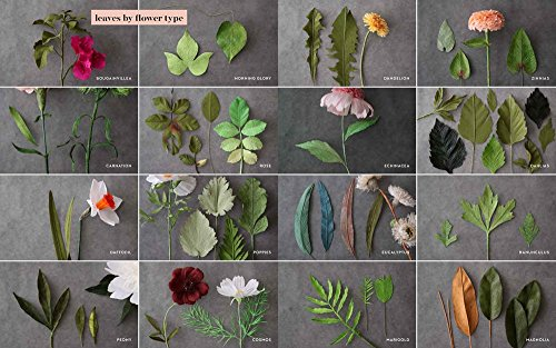 The Fine Art of Paper Flowers: A Guide to Making Beautiful and Lifelike Botanicals by Watson-Guptill (Image #8)