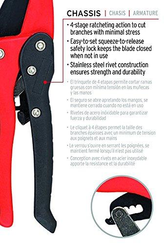 Corona RP 3230 Ratchet Hand Pruner, 3/4-Inch Cut by Corona (Image #3)