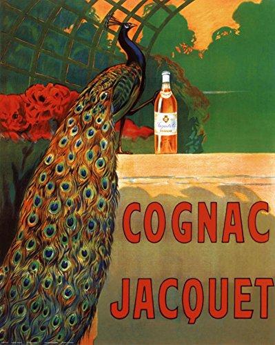 Liquor Art Poster (Cognac Jacquet Poster by Leonetto Cappiello 16 x 20in)