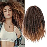 3Packs Marley Hair for Twists Afro Kinky Twist Crochet Hair 18Inch Ombre Synthetic Kanekalon Braiding Hair Extensions(#1B/27)