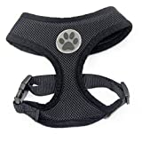 BINGPET BB5001 Soft Mesh Dog Harness Pet Walking Vest Puppy Padded Harnesses Adjustable, Black Medium