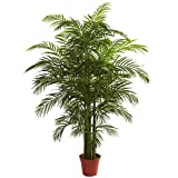 Nearly Natural 5390 Areca Palm UV Resistant Tree, 6.5-Feet, Green