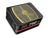 Thermaltake Toughpower DPS G 750W Digital 80+ Gold Fully Modular ATX 12V 2.31/EPS 12V 2.92 Power Supply 10 YR Warranty PS-TPG-0750DPCGUS-G