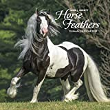 Horse Feathers 2020 Wall Calendar