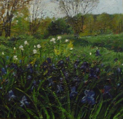 """""""Irises In Spring II"""" by Jennifer Vranes"""