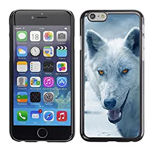 Qstar Arte & diseño plástico duro Fundas Cover Cubre Hard Case Cover para Apple iPhone 6(4.7 inches) ( Wolf Arctic Winter Furry Canine Beast)