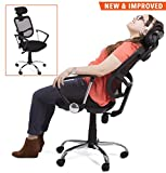 ProErgo Ergonomic Office Chair – Supports over 250 lbs. – Comfort Mesh Back w/ Lumbar Support – Fully Adjustable Headrest + Armrests & Casters - Perfect Office Chair or Home Office Chair! (Black)