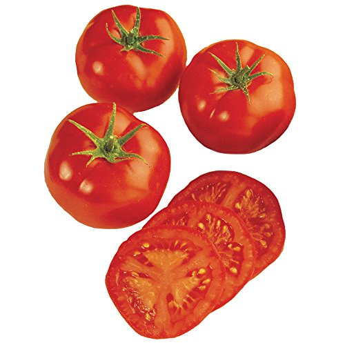 Early Tomato - Burpee Early Girl Tomato Seeds 50 seeds